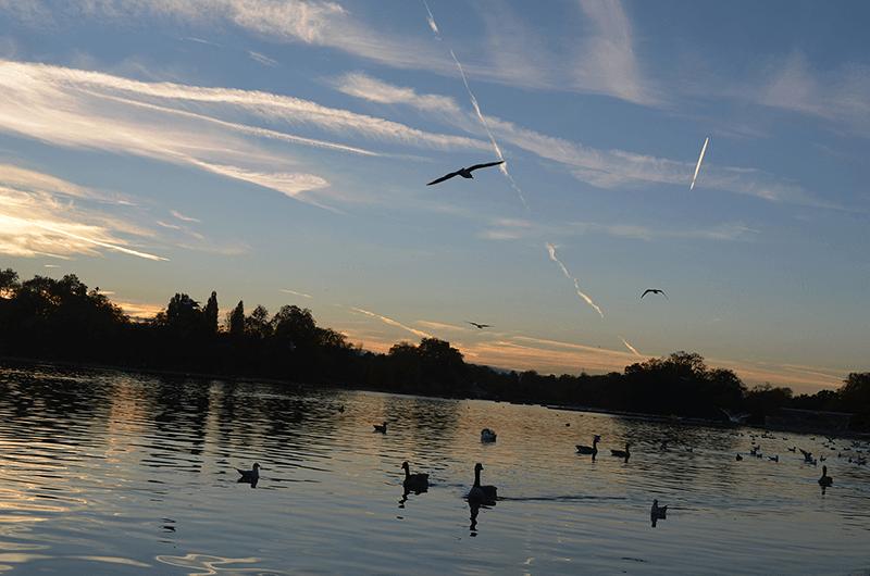 Hyde Park London - AntonellaM